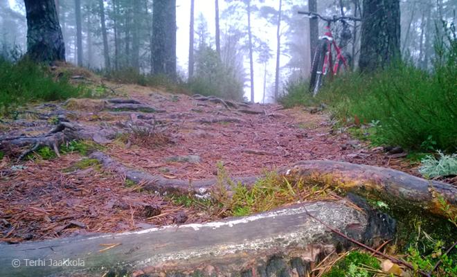 Joulukuun poluilla maastopyöräilemässä Kuva: Terhi Jaakkola