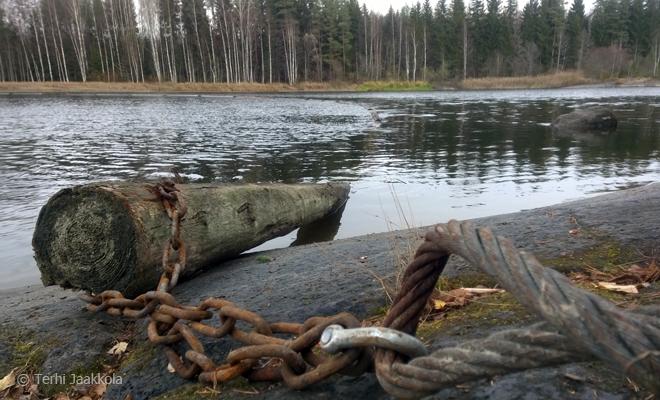 Hyytöpuomit valmiina talveen Kuva: Terhi Jaakkola