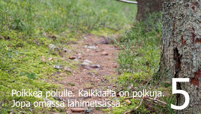 Polkujuoksua aloittelijoille 5 Kuva: Terhi Jaakkola