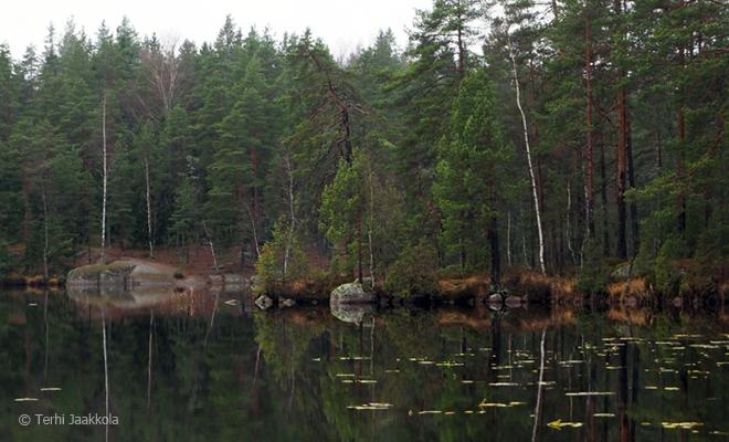 Ruuhijärvi Kuva: Terhi Jaakkola
