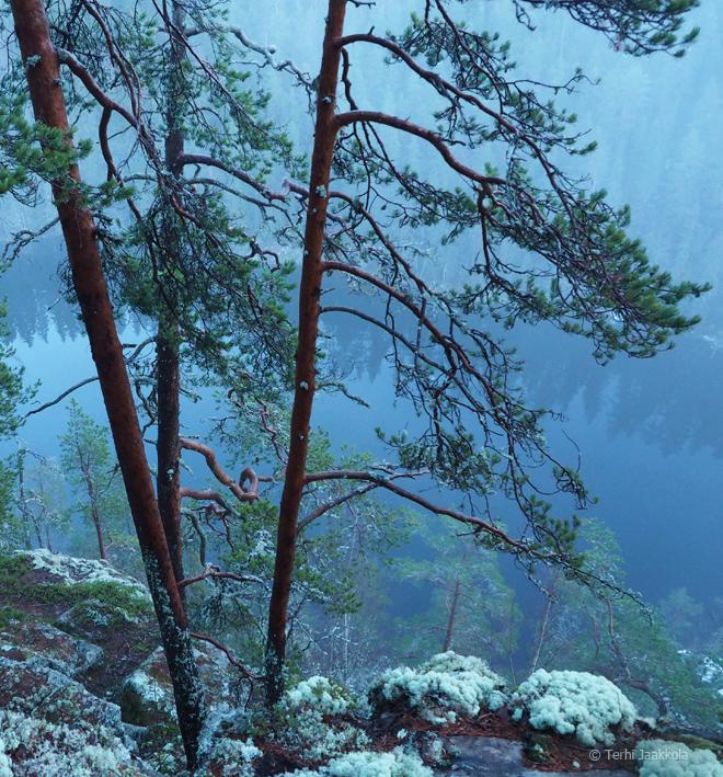 Kalajavuorella Kuva: Terhi Jaakkola